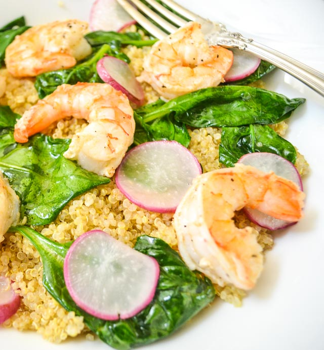 Close up of Lemony Shrimp Quinoa with Wilted Spinach and Sliced Radishes