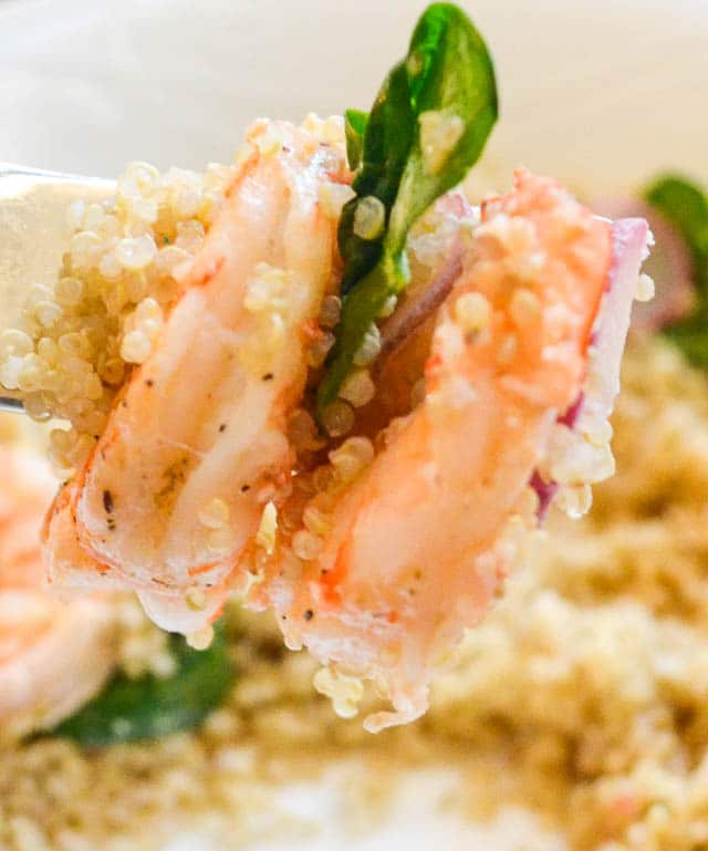 Fork with Bite of Lemony Shrimp Quinoa, Spinach and Radishes