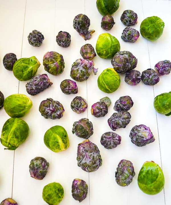 raw whole green and purple brussel sprouts on white background